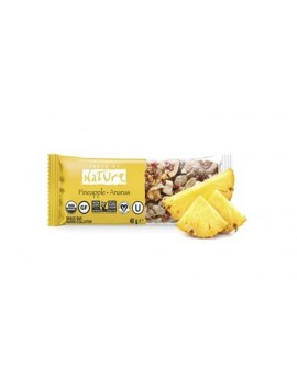 Taste of Nature pineapple-ananas 40g