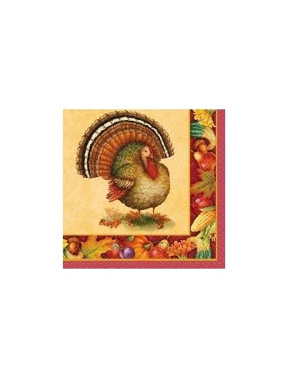 Servilletas Thanksgiving festive turkey pequeñas 16ct