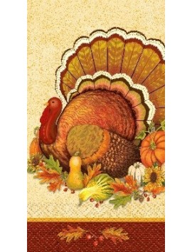 Servilletas Thanksgiving  turkey 16ct